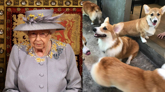 The Queen has reportedly been left devastated after one of her puppies died
