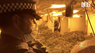 LBC accompanies Merseyside Police on a raid of a cannabis farm in St Helens