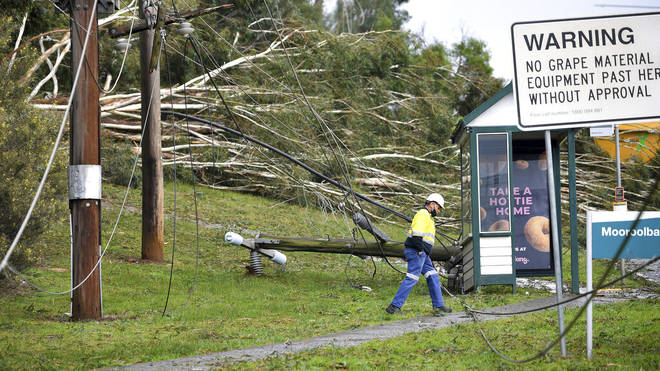 Downed power lines and fallen trees in Melbourne, Australia