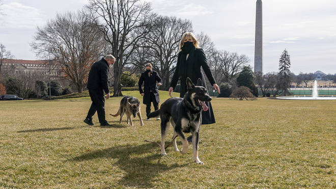 Jill Biden with Champ and Major on the South Lawn of the White House