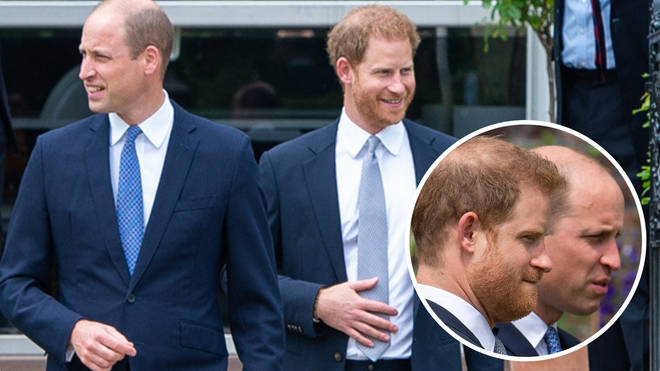 Prince William and Prince Harry unveiled a statue of their mother on Thursday