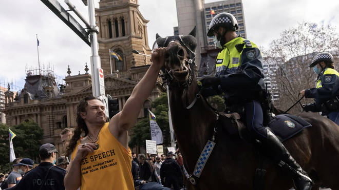 An anti-lockdown protester appeared to punch a police horse in the face