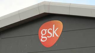 GSK profits
