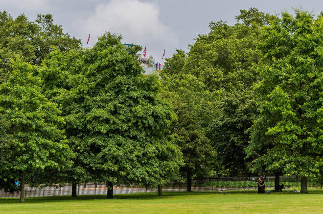 Views of London promised from the top of the mound are obscured by trees
