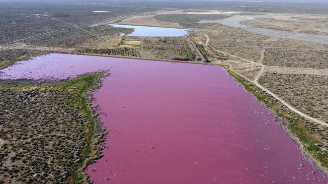 The waters of the Corfo lagoon are pink in Trelew, Chubut province, Argentina
