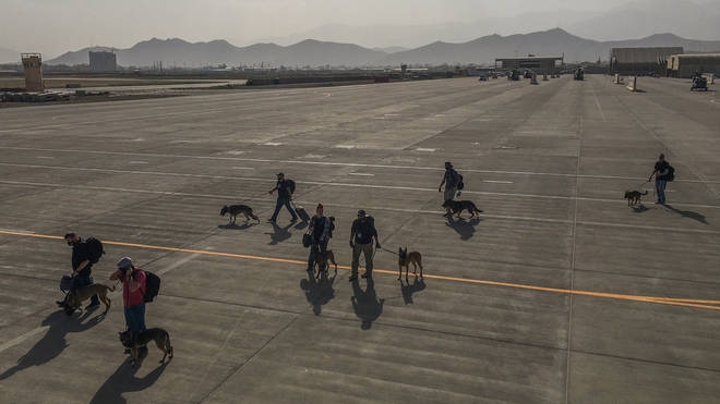 Images on social media showed the dogs with their handlers at Kabul Airport