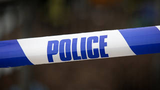 Officers were called to the A3 in Surrey after a member of the public found a body