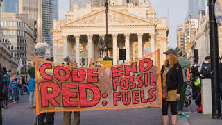 Extinction Rebellion have held two weeks of protests across London.