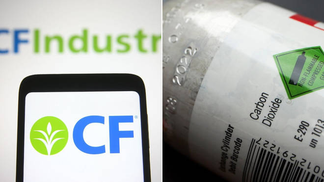 Fertiliser firm CF Industries has struck a deal with the UK government