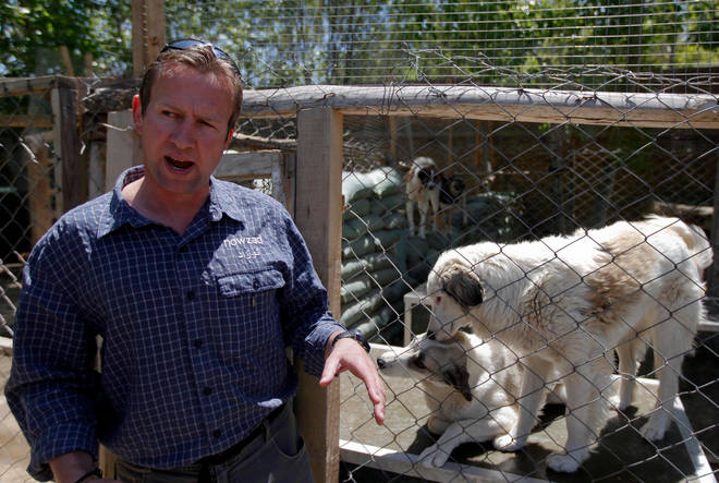 Pen Farthing had staff and animals from his charity Nowzad evacuated from Afghanistan