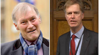 Sir David Amess and Stephen Timms were both attacked at constituency surgeries