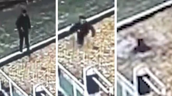 Man plunges into canal after mistaking it for a leafy footpath