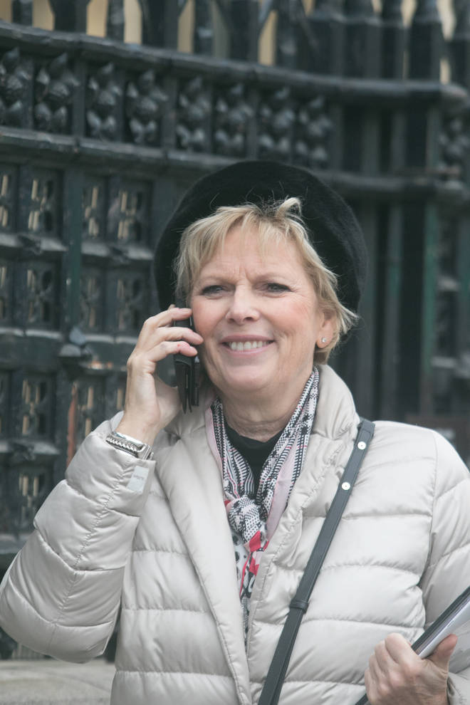 Anna Soubry in Westminster
