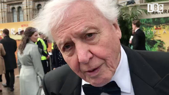 Sir David Attenborough spoke to LBC at the premiere of his new Netflix series