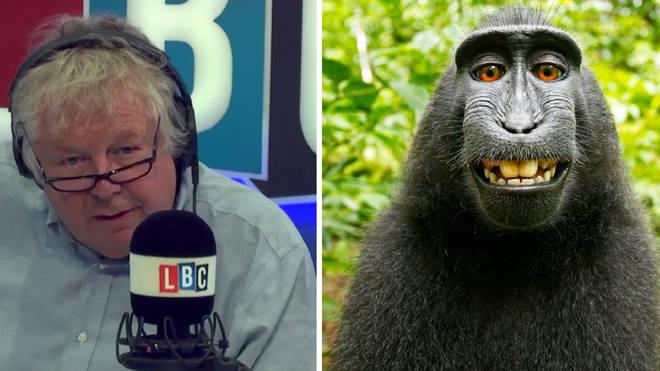 Nick Ferrrari Monkey