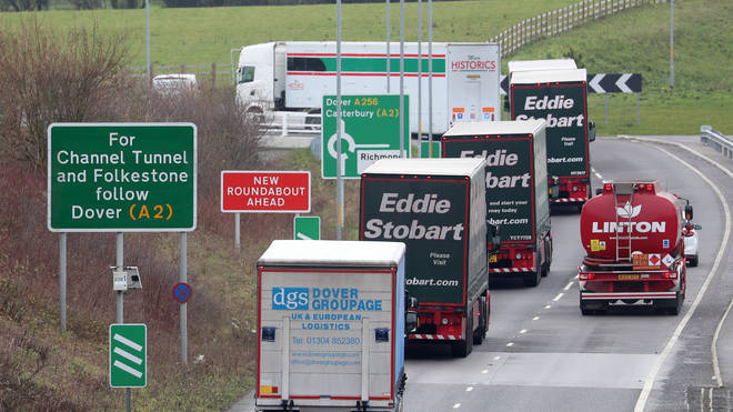 Lorry drivers could be required to wait for several days in queues