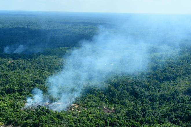 Smoke rises from the forest in a region of the Amazon near the Colombian border. Brazil has the worst forest fires in years.