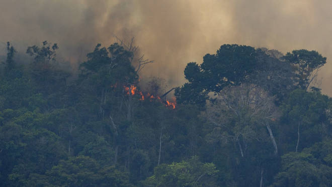 Local army have been called in to tackle the wildfires in the Amazon