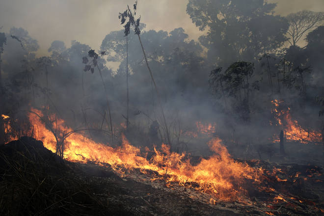 A fire burns along the road to Jacunda National Forest, near the city of Porto Velho in the Vila Nova Samuel region which is part of Brazil's Amazon.