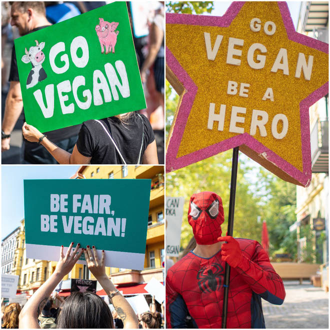A Go Vegan protest