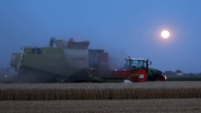 Harvest moons occur once a year between September and October
