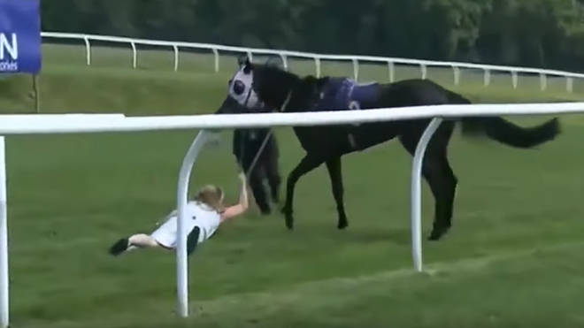 TV presenter Hayley Moore managed to bring the horse under control