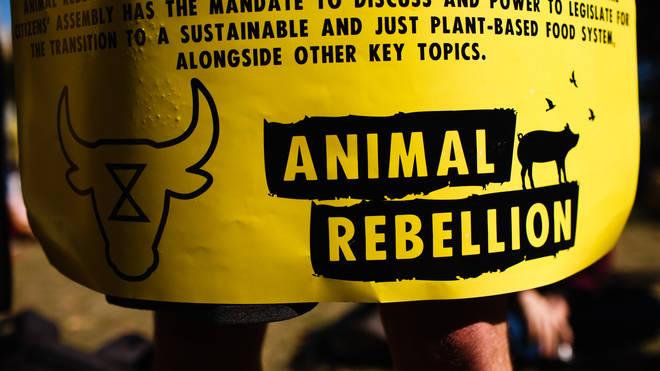 Vegan Group To Occupy Smithfield Market Tonight, Activist Tells LBC