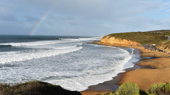 The dog tumbled down a cliff at Bells Beach, Victoria