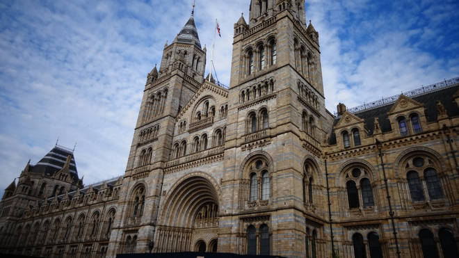 The Natural History Museum was one of those examined