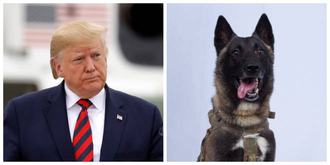 President Donald Trump and the unnamed US military dog