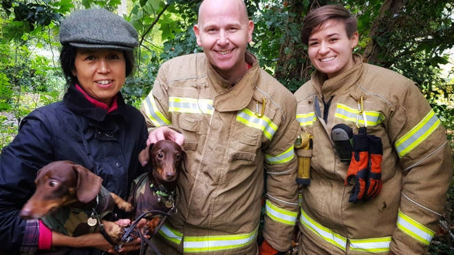 Linus the dachshund got stuck while on a walk in Wanstead Park