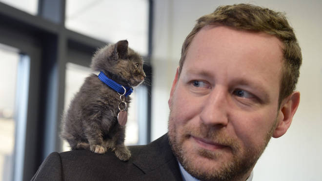 Former Conservative culture minister Ed Vaizey