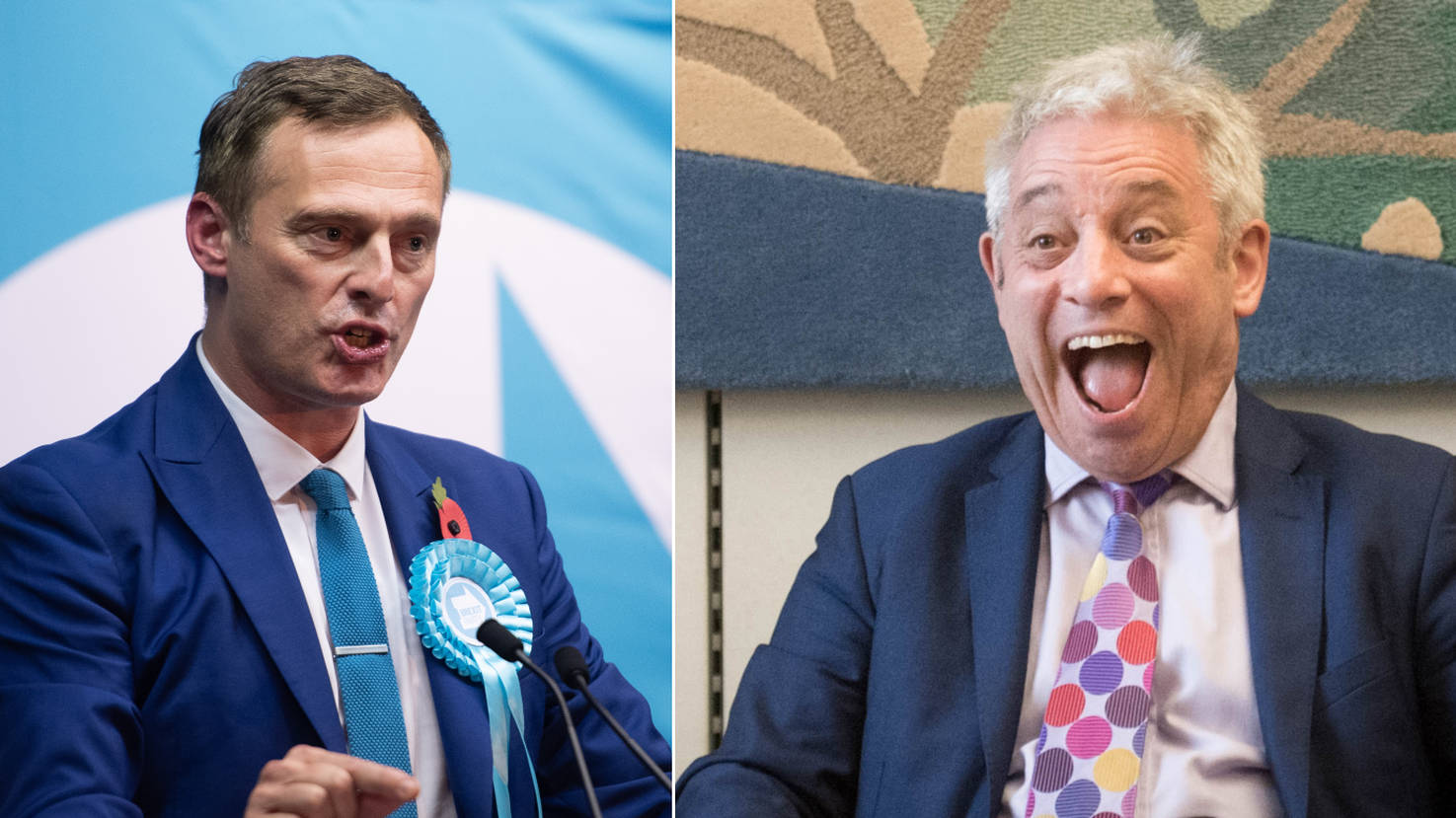 Brexit Party MEP's Brutal Response To John Bercow's Claim Brexit Is Huge Mistake
