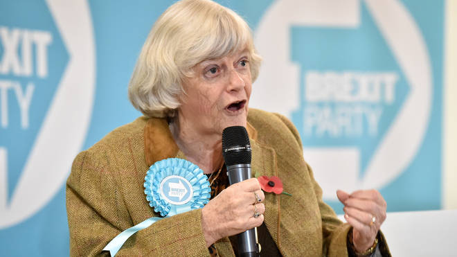 Ann Widdecbome tells LBC Brexit Party is running out of time for non-aggression pact
